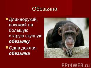 Длиннорукий, похожий на большую старую скучную обезьяну Длиннорукий, похожий на