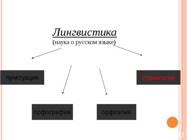 Лингвистика (наука о русском языке)
