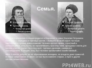 Семья. Алексей Васильевич Кольцов-родился в Воронеже в семье Василия Петровича К