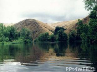 Оренбургский государственный степной заповедник создан в 1989 году. Он состоит и