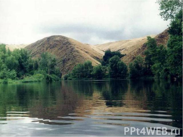 """Оренбургский государственный степной заповедник создан в 1989 году. Он состоит из четырех участков, общей площадью 21,7 тыс. га. А именно: """"Таловская степь"""" (3200 га), """"Буртинская степь"""" (4500 га), """"Айтуарская степь"""" (6…"""