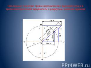 Численные значения тригонометрических функций угла α в тригонометрической окружн