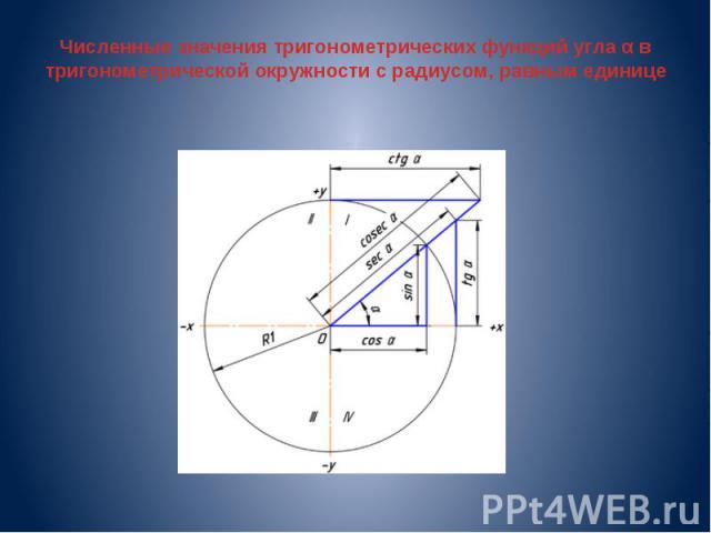 Численные значения тригонометрических функций угла α в тригонометрической окружности с радиусом, равным единице