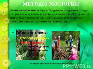 Полевые экологические исследования
