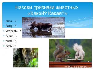 Назови признаки животных «Какой? Какая?» лиса – ? Заяц - ? медведь - ? белка - ?
