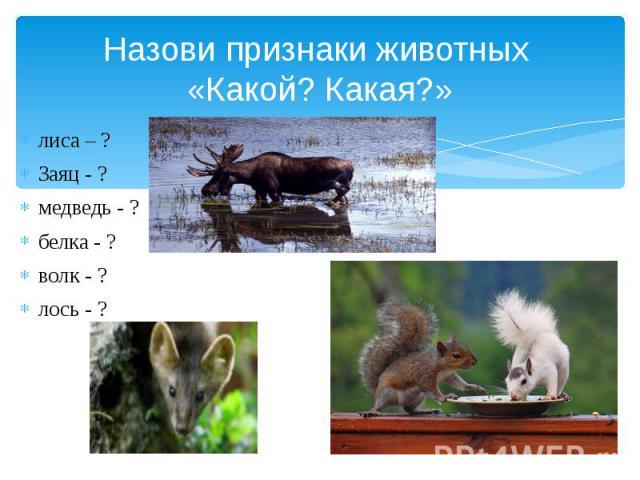 Назови признаки животных «Какой? Какая?» лиса – ? Заяц - ? медведь - ? белка - ? волк - ? лось - ?