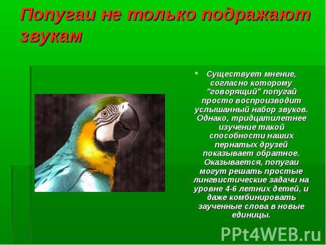 """Существует мнение, согласно которому """"говорящий"""" попугай просто воспроизводит услышанный набор звуков. Однако, тридцатилетнее изучение такой способности наших пернатых друзей показывает обратное. Оказывается, попугаи могут решать простые л…"""
