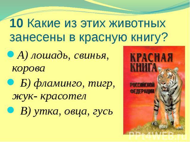 10 Какие из этих животных занесены в красную книгу? А) лошадь, свинья, корова Б) фламинго, тигр, жук- красотел В) утка, овца, гусь