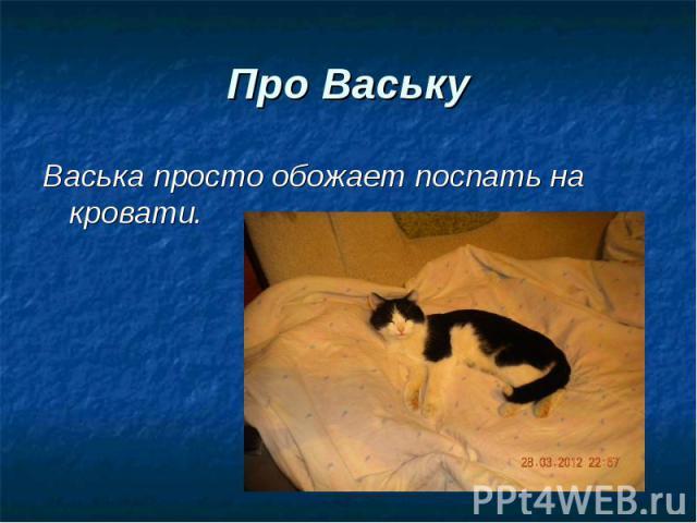 Васька просто обожает поспать на кровати. Васька просто обожает поспать на кровати.