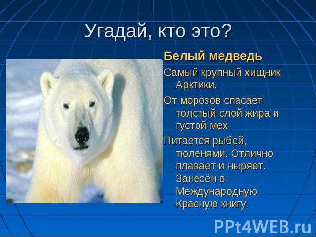 Шубу тёплую он носит, Шубу тёплую он носит, Не страшит его мороз. Одного со снегом цвета, Выдаёт лишь чёрный нос.