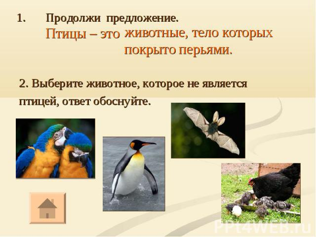 2. Выберите животное, которое не является птицей, ответ обоснуйте.