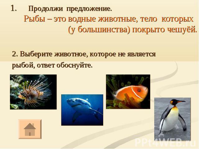 2. Выберите животное, которое не является рыбой, ответ обоснуйте.
