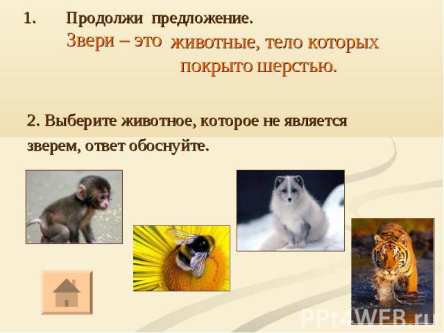 2. Выберите животное, которое не является зверем, ответ обоснуйте.
