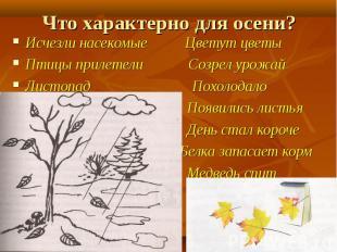Исчезли насекомые Цветут цветы Исчезли насекомые Цветут цветы Птицы прилетели Со