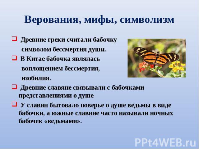 Древние греки считали бабочку Древние греки считали бабочку символом бессмертия души. В Китае бабочка являлась воплощением бессмертия, изобилия. Древние славяне связывали с бабочками представлениями о душе У славян бытовало поверье о душе ведьмы в в…