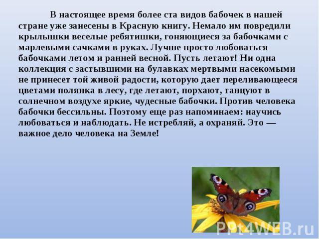 В настоящее время более ста видов бабочек в нашей стране уже занесены в Красную книгу. Немало им повредили крылышки веселые ребятишки, гоняющиеся за бабочками с марлевыми сачками в руках. Лучше просто любоваться бабочками летом и ранней весной. Пуст…