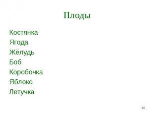 Костянка Костянка Ягода Жёлудь Боб Коробочка Яблоко Летучка
