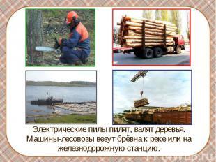 Электрические пилы пилят, валят деревья. Машины-лесовозы везут брёвна к реке или