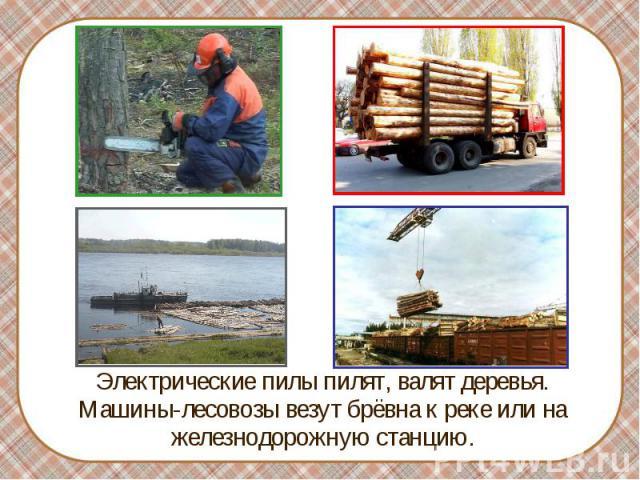 Электрические пилы пилят, валят деревья. Машины-лесовозы везут брёвна к реке или на железнодорожную станцию. Электрические пилы пилят, валят деревья. Машины-лесовозы везут брёвна к реке или на железнодорожную станцию.