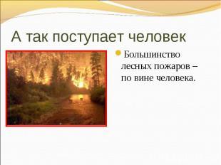 Большинство лесных пожаров – по вине человека. Большинство лесных пожаров – по в