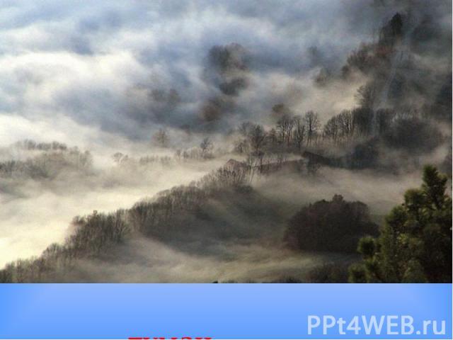 туман туман