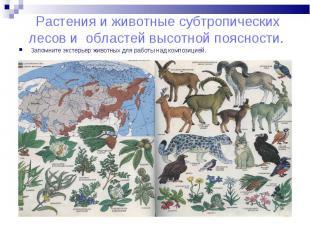 Запомните экстерьер животных для работы над композицией. Запомните экстерьер жив