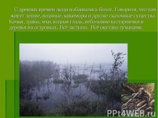 С древних времен люди побаивались болот. Говорили, что там живут лешие, водяные,