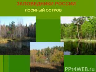 ЗАПОВЕДНИКИ РОССИИ ЗАПОВЕДНИКИ РОССИИ ЛОСИНЫЙ ОСТРОВ