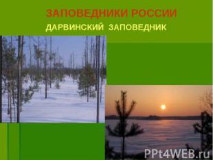 ЗАПОВЕДНИКИ РОССИИ ЗАПОВЕДНИКИ РОССИИ ДАРВИНСКИЙ ЗАПОВЕДНИК