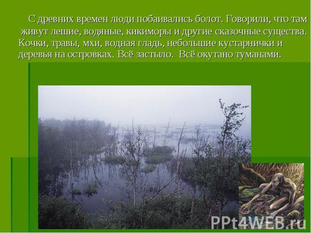 С древних времен люди побаивались болот. Говорили, что там живут лешие, водяные, кикиморы и другие сказочные существа. Кочки, травы, мхи, водная гладь, небольшие кустарнички и деревья на островках. Всё застыло. Всё окутано туманами. С древних времен…