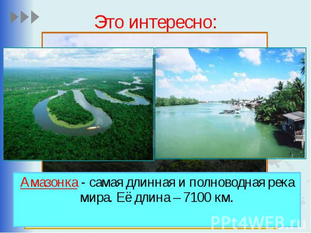 Это интересно: Амазонка - самая длинная и полноводная река мира. Её длина – 7100 км.