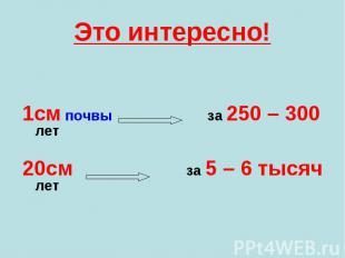 1см почвы за 250 – 300 лет 1см почвы за 250 – 300 лет 20см за 5 – 6 тысяч лет