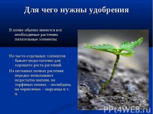В почве обычно имеются все необходимые растению питательные элементы. В почве об
