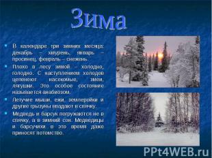 В календаре три зимних месяца: декабрь – хмурень, январь – просинец, февраль – с