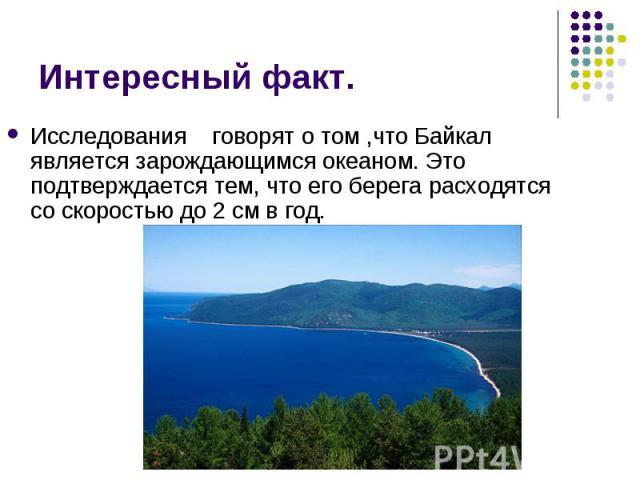 Исследования говорят о том ,что Байкал является зарождающимся океаном. Это подтверждается тем, что его берега расходятся со скоростью до 2 см в год. Исследования говорят о том ,что Байкал является зарождающимся океаном. Это подтверждается тем, что е…