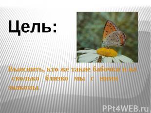 Цель: Выяснить, кто же такие бабочки и на сколько близко мы с ними знакомы.