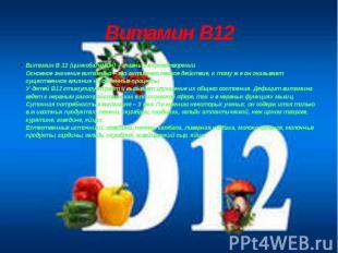 Витамин В12 Витамин B 12 (цинкобаламин) – главный в кроветворении Основное значе