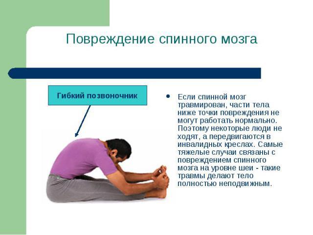 Если спинной мозг травмирован, части тела ниже точки повреждения не могут работать нормально. Поэтому некоторые люди не ходят, а передвигаются в инвалидных креслах. Самые тяжелые случаи связаны с повреждением спинного мозга на уровне шеи - такие тра…