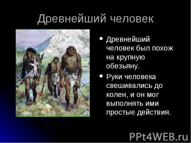 Древнейший человек был похож на крупную обезьяну. Древнейший человек был похож на крупную обезьяну. Руки человека свешивались до колен, и он мог выполнять ими простые действия.