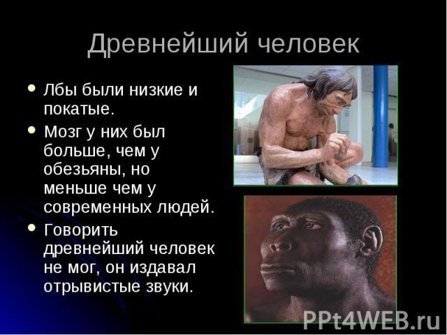 Лбы были низкие и покатые. Лбы были низкие и покатые. Мозг у них был больше, чем у обезьяны, но меньше чем у современных людей. Говорить древнейший человек не мог, он издавал отрывистые звуки.