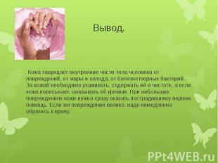 Вывод. Кожа защищает внутренние части тела человека от повреждений, от жары и хо