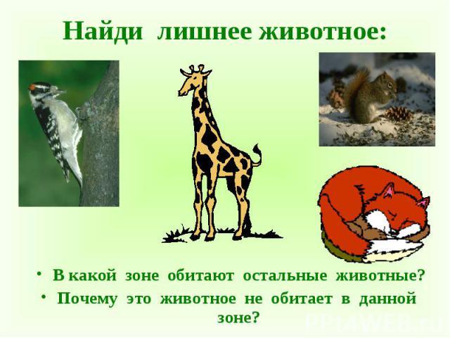 В какой зоне обитают остальные животные? В какой зоне обитают остальные животные? Почему это животное не обитает в данной зоне?