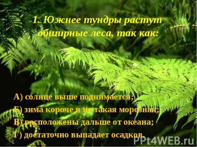 А) солнце выше поднимается; А) солнце выше поднимается; Б) зима короче и не такая морозная; В) расположены дальше от океана; Г) достаточно выпадает осадков.