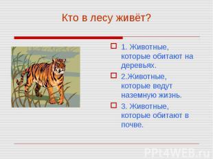 1. Животные, которые обитают на деревьях. 1. Животные, которые обитают на деревь