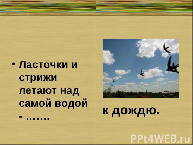Ласточки и стрижи летают над самой водой - …….