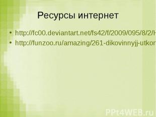 Ресурсы интернет http://fc00.deviantart.net/fs42/f/2009/095/8/2/HOLY_MUDKIPS_by_