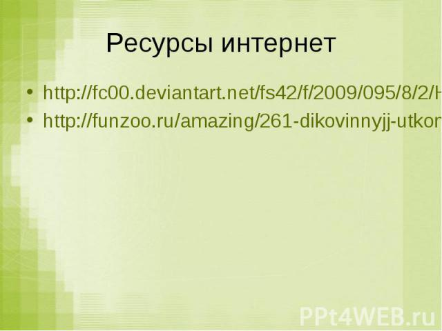 Ресурсы интернет http://fc00.deviantart.net/fs42/f/2009/095/8/2/HOLY_MUDKIPS_by_AngelicNekoMegumi.jpg http://funzoo.ru/amazing/261-dikovinnyjj-utkonos.html