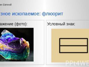 Изображение (фото): Изображение (фото):