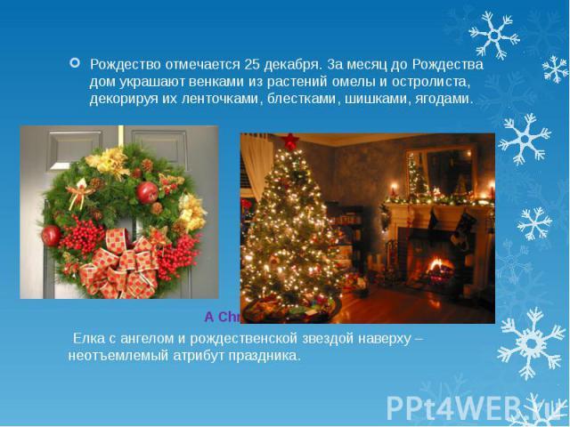 Рождество отмечается 25 декабря. За месяц до Рождества дом украшают венками из растений омелы и остролиста, декорируя их ленточками, блестками, шишками, ягодами. A Christmas tree Елка с ангелом и рождественской звездой наверху – неотъемлемый атрибут…