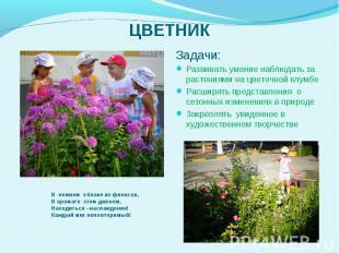 Задачи: Задачи: Развивать умение наблюдать за растениями на цветочной клумбе Рас